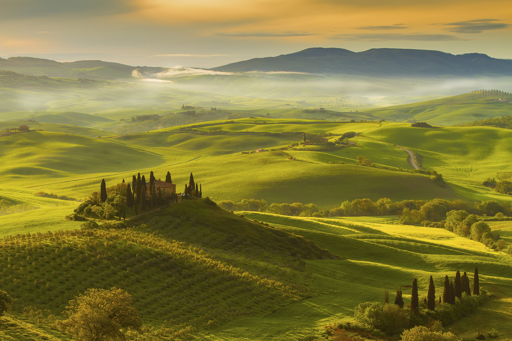 Private Tours of Val d'Orcia (Tuscany)